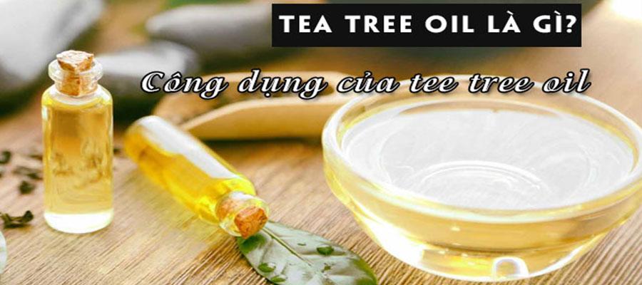 tea-tree-oil-la-gi-tea-tree-oil-tri-mun-co-tot-khong
